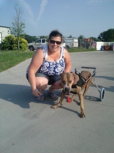 Karin, our donor, and Prancer in her new chair.