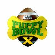 Puppy Bowl