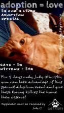 Last Hope Cats